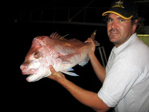 tagged snapper