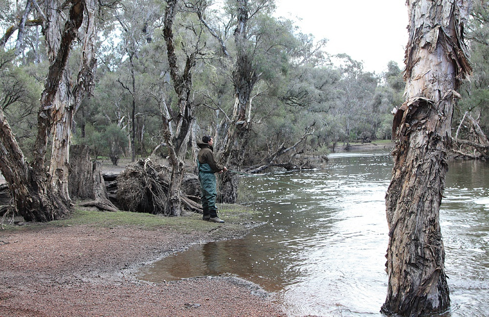 Fishing the banks in WA's south west