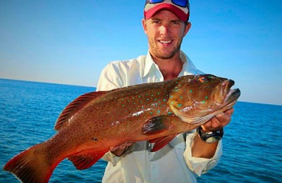 Exmouth coral trout