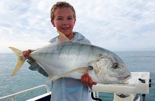 Broome trevally