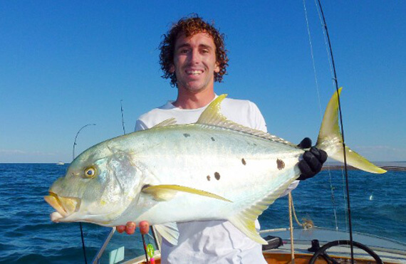 Exmouth golden trevally