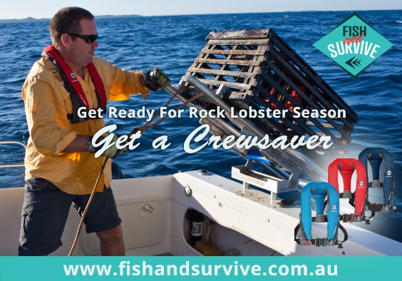 Fish and Survive lobster ad