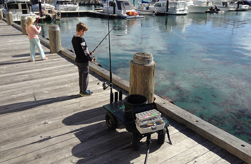 DockStar Fishing Cart