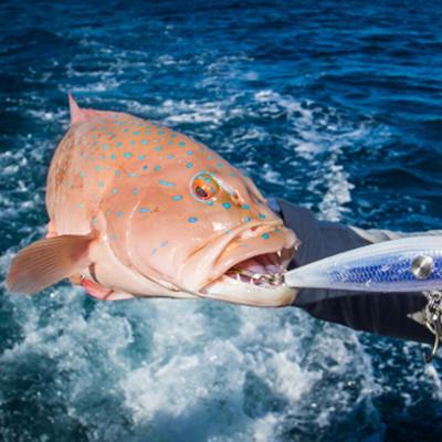 FishingReportsThumb