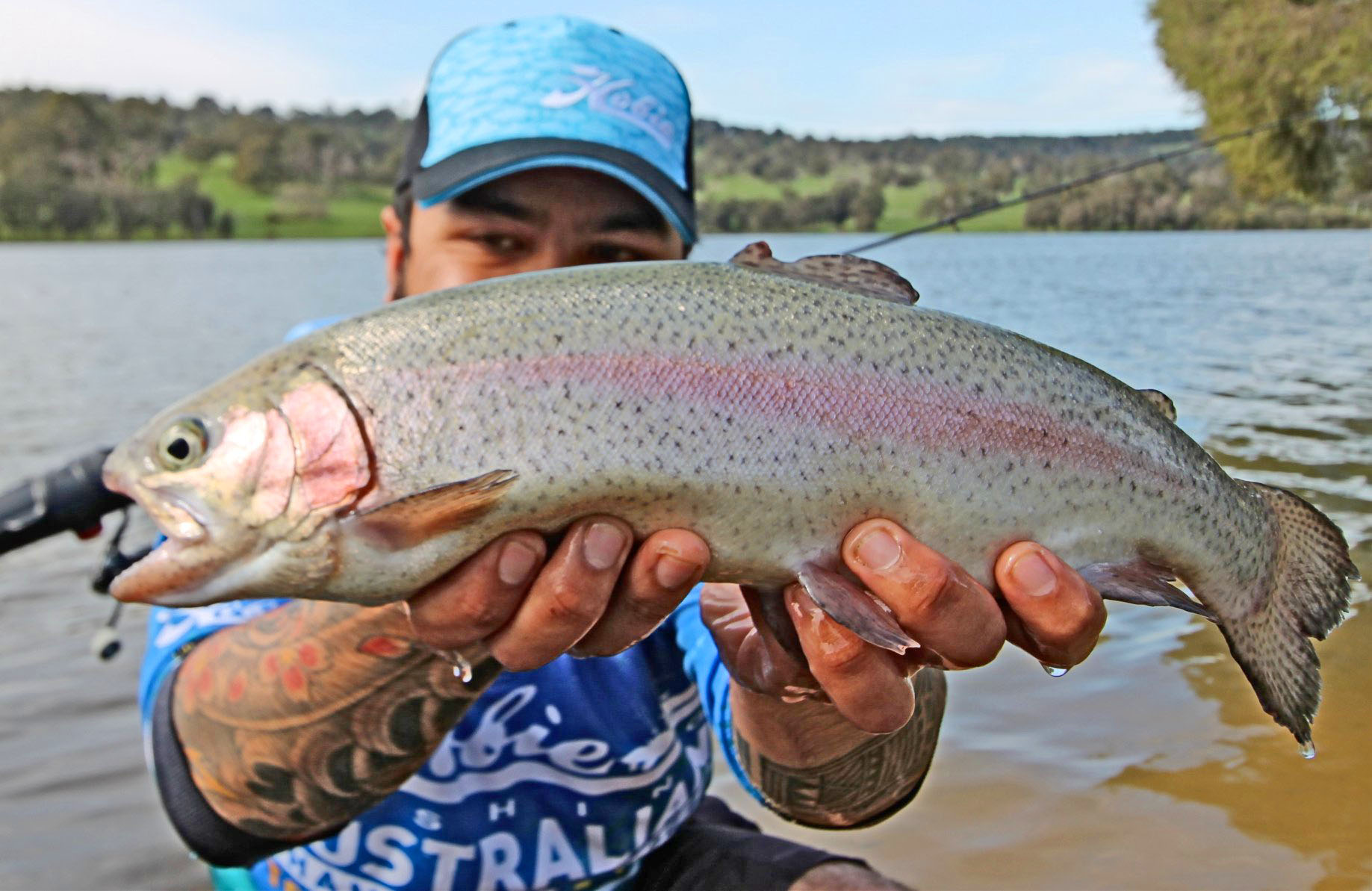 Freshwater Trout   ilovefishing