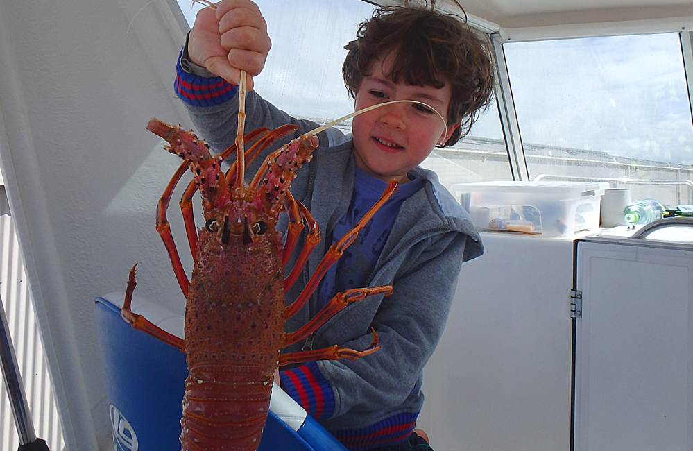 Zac holding a western rock lobster