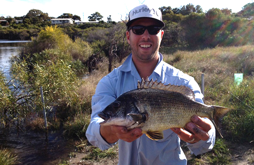 Big bream caught at Moore River