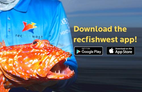 RecfishwestAppFeature