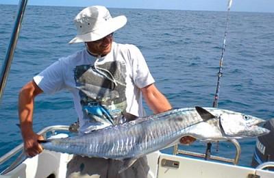 Broome Spanish mackerel