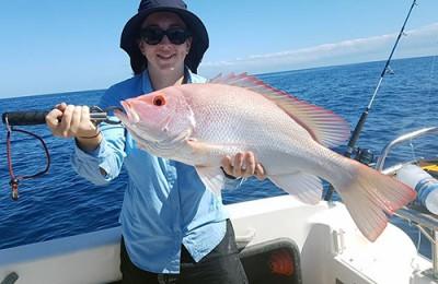 Port Hedland saddletail snapper