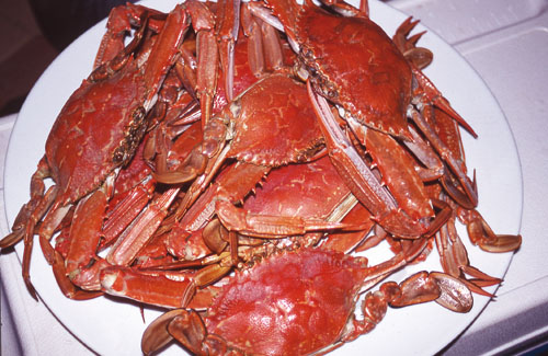 A plate of cooked blue swimmer crabs