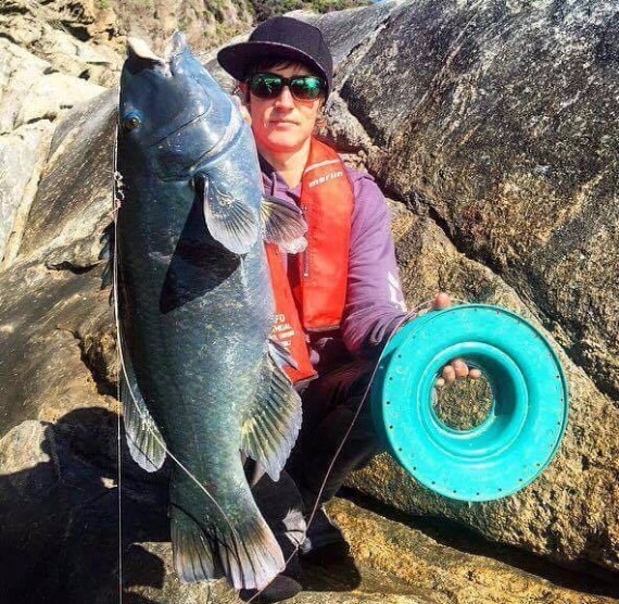 Albany blue groper caught on hand line