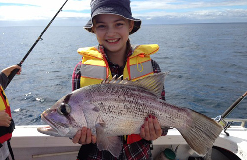 Albany dhufish
