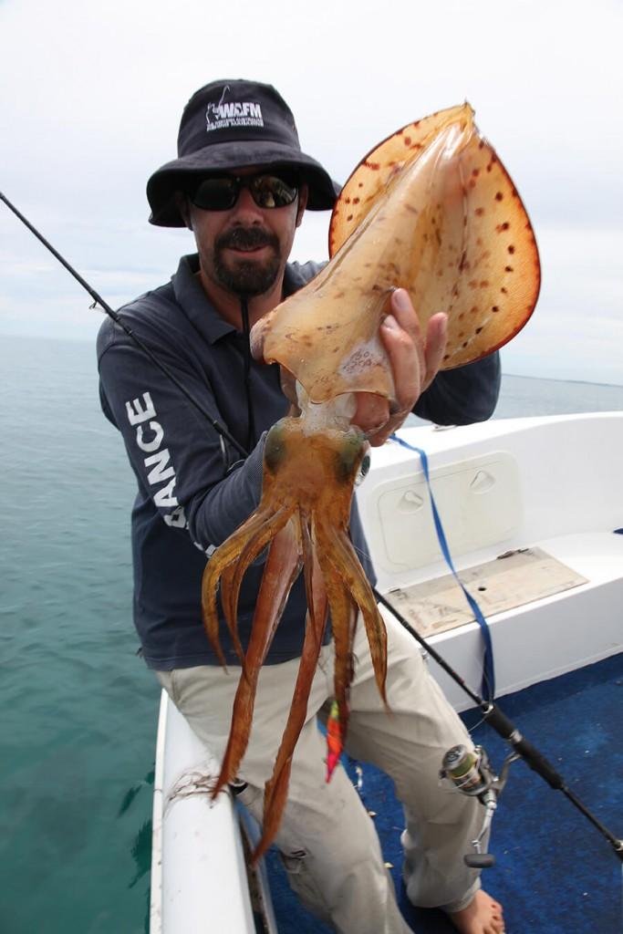 Winter squid