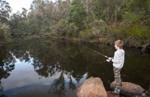 Warren River fishing