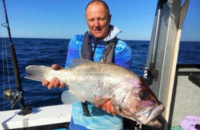 Geraldton dhufish